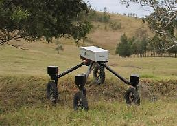 Australians develop cattle-herding robot with SWAG