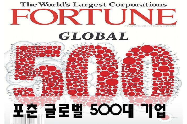 내년 포춘 글로벌 500대 기업에 도전할 중국기업