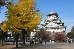 오사카 여행에서 꼭 경험해 봐야 할 것은?