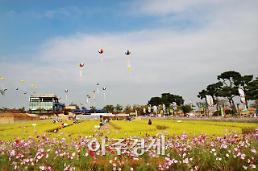 가을, 축제로 물들다…가을에 가볼만한 지역 축제 5선