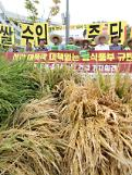 .South Korea decides to purchase more rice from farmers.