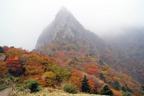 今年汉拿山枫叶16日变红 29日进入红叶全盛期