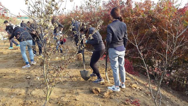 수도권매립지에'북한으로 보내는 숲'조성 - 아주경제