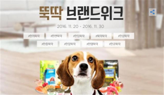 Gmarket举行宠物用品折扣活动 各种品牌选不停