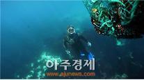 """'제주해녀문화' 유네스코 등재 """"초읽기"""""""