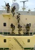 Parliament allows armed guards on ships sailing in dangerous waters