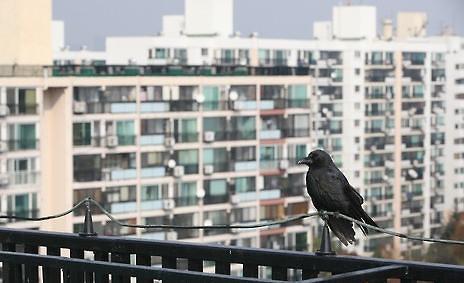 韩民众对房地产重拾信心 明年1月公寓入住率创新高
