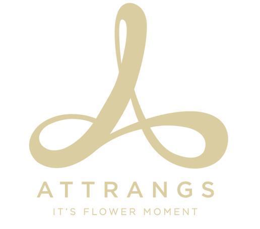 韩国女装品牌Attrangs 活用大数据进军海外市场