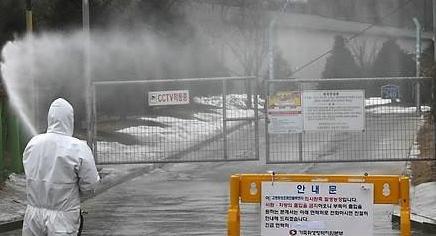 12万只问题肉鸡流向市场 韩政府称将全部回收