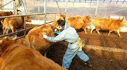 .S. Korea confirms fresh outbreak of foot-and-mouth animal disease.