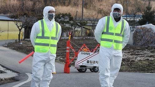 全罗北道井邑出现口蹄疫病例 48只肉牛被掩埋处理