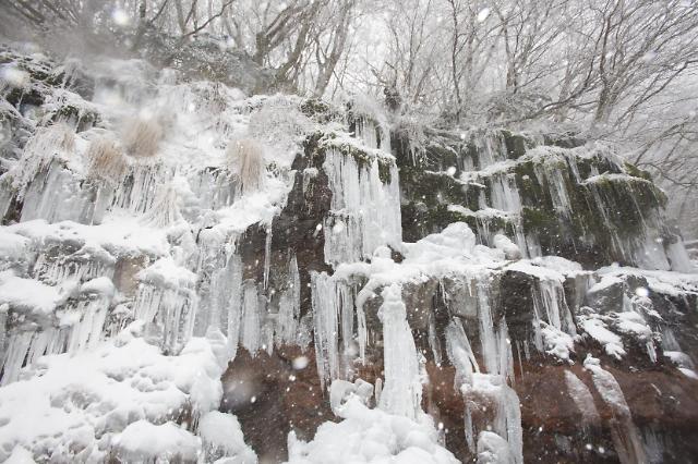 济州岛遇强降雪 郁陵岛积雪将达70厘米