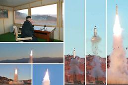 N. Korea hails successful launch of new road-mobile ballistic missile