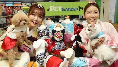 逾五分之一韩国家庭养宠物 老龄化低生育率成主因