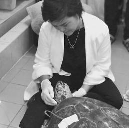 .Piggy Bank sea turtle in Thailand dies after surgery to remove 915 coins.
