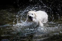 [GLOBAL PHOTO] Splashing time!!!