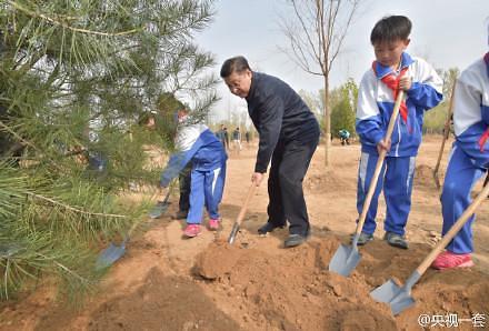 중국 청명절 앞두고 시진핑 나무심기…