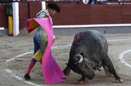 [GLOBAL PHOTO] Dancing matador