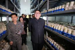 .N. Korea convenes rubber-stamp parliamentary meeting: Yonhap .