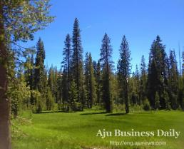 For Nature Fanatics, Lassen Volcanic National Park
