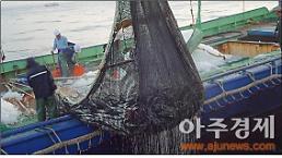 제주, 수산물 수출 美·日·中 활기