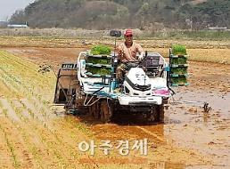 <포토>보령지역 첫 모내기로 풍년 영농 스타트!