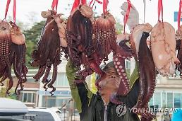 Fisherman puts large octopuses on display during sea festival