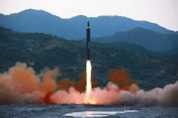 .THAAD radar detected N. Koreas missile launch: defense chief / Yonhap.