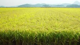 .S. Korea starts shipping surplus rice this week in aid to Cambodia and Myanmar   .