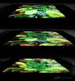 .Samsung to introduce worlds first stretchable display.