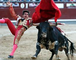 [GLOBAL PHOTO] Spanish bullfighting