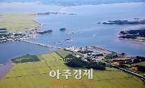충남도, 천수만 고수온 '3단계 대응책' 가동