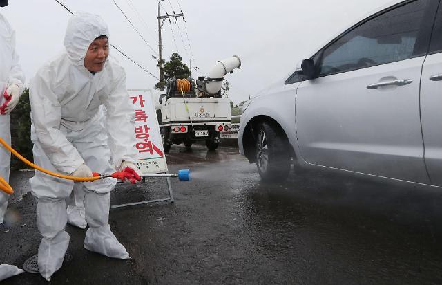时隔两个月再现禽流感疫情 韩政府上调警报至最高级别