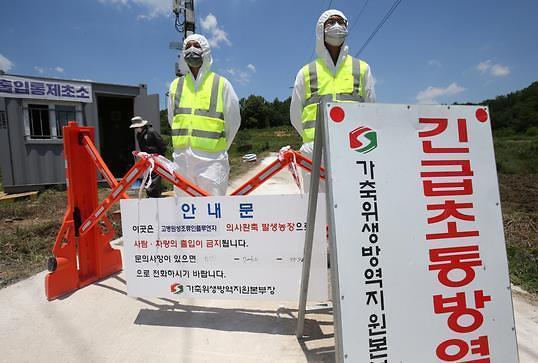 韩政府拟禁传统市场活鸡交易