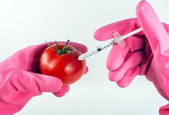 转基因食品知多少? 韩国过半民众认知不足