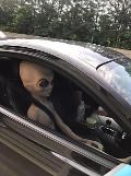 Cop pulls over speeding car and finds Alien in passenger seat