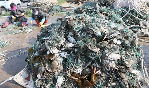 上半年在韩非法捕捞中国渔船大减