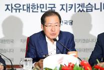 """홍준표 """"文 정부, 소득주도성장 실험 중단해야…무책임"""""""