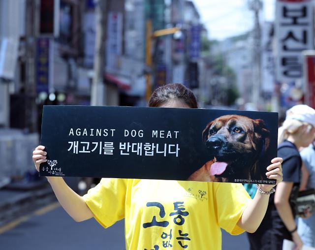 韩动物保护团体走上街头 反对吃狗肉