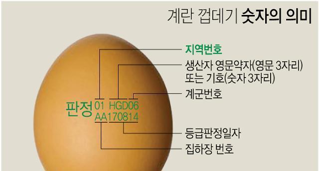'09지현·08신선농장·11시온·13정화' 피하세요…메추리알은 안심