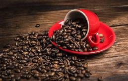 韩多家咖啡连锁店上黑榜 卫生管理问题堪忧