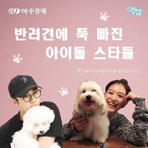 [아잼&스타] 하이라이트 양요섭♥양갱-엑소 세훈♥비비…반려견에 푹 빠진 스타는?