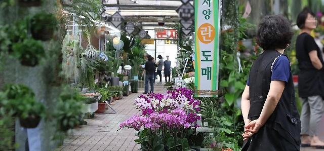 韩反腐法实施近一年 农渔民苦不堪言送礼限额仍存争议