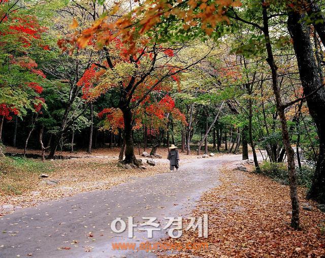 自然与人文共存的顺天 给你今秋最难忘的时光