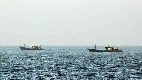 朝鲜海域中国作业渔船大增 韩日鱿鱼产量锐减引担忧