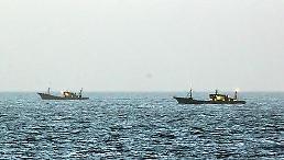 .朝鲜海域中国作业渔船大增 韩日鱿鱼产量锐减引担忧.