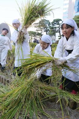 꼬마 농부 체험