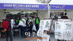 2017 고양 다문화 어울마당 개최