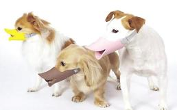 .宠物狗咬伤人!韩国法院都是怎么判的?.