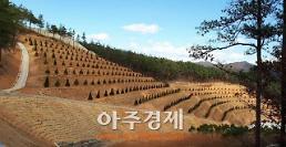 보령시, 자연친화적 공설수목장림 조성...내년도 운영 예정